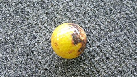 たこ焼きゴルフボール