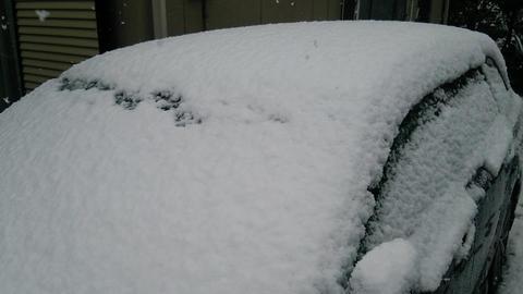 関東でも雪